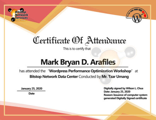 Mark Bryan Arafiles